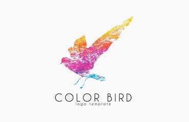 Color bird. Rainbow logo. Colorful logo design. Creative logo