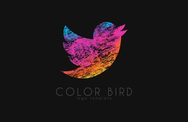 color bird logo. twitter bird. colorful logo. bird in grunge style
