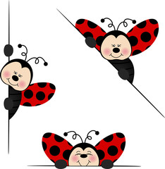 Ladybird  peeking from behind in various positions