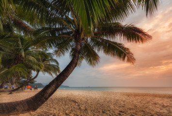 Thailand. Ko Chang. Tropical sunset. On the beach White Sand Beach