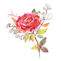 Bouquet of roses, watercolor, can be used as greeting card, invitation card for wedding, birthday and other holiday and summer background.
