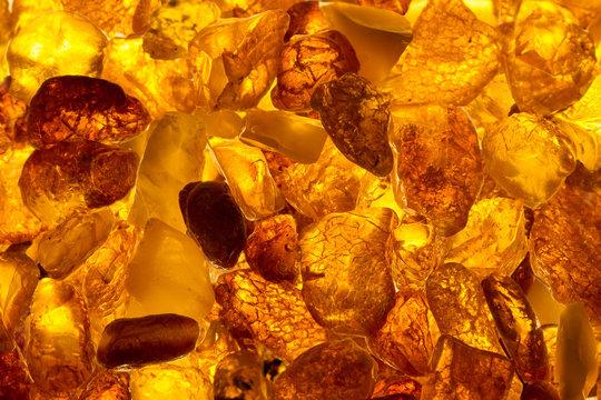 closeup baltic amber stones lie on a flat surface