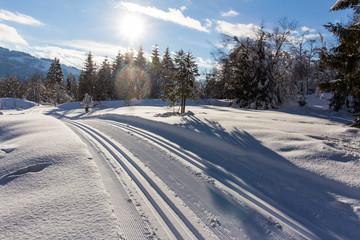 Langlaufloipe, Winterlandschaft in den Bergen, Hinterthal