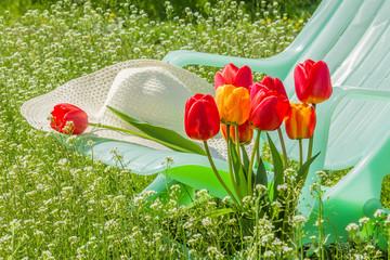 Deckchair, hat, tulips on sunny spring lawn