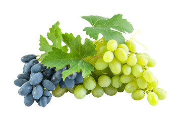 Blue and green grapes
