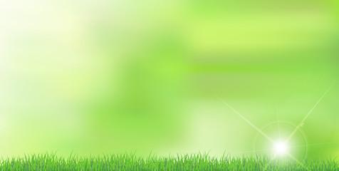 新緑 草 風景 背景