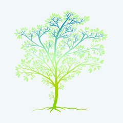 young tree of life