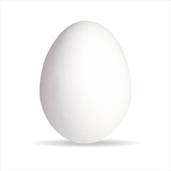 Ei Eier Bio Ostern Eierschale weiß Bauernhof essen Vektor Güteklasse Hühnerei stehend -  - Egg Organic Easter eggshell white farm food vector easter hen's egg chicken egg standing