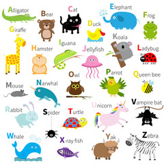 Zoo animal alphabet. Cute cartoon character set. Isolated. White design. Baby children education. Alligator, bear, cat, duck, elephant, frog, giraffe, hamster, iguana, jellyfish, koala Flat design.