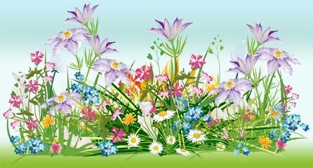 już wiosna,