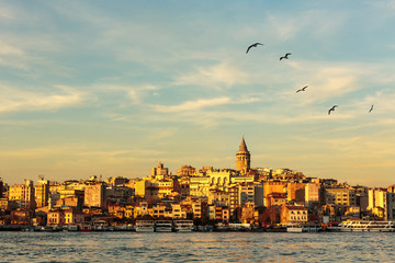 Galata Tower and Golden Horn with nice blue sky and seagulls flying