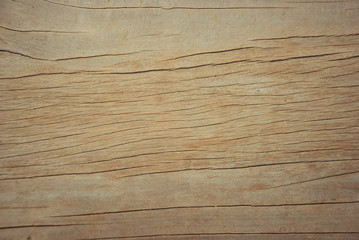 The wood texture of background old panels