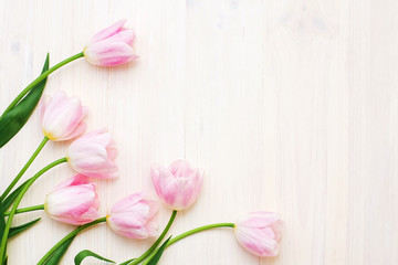 Pink tulips on white wooden background. Flat lay, top view, Greeting card concept.