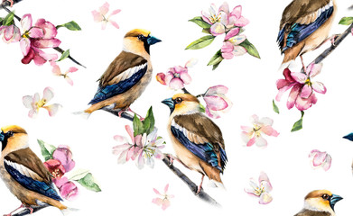 Grosbeaks seamless. Birds on a branch with flowers. Decoration with wildlife scene. Pattern with birds. Watercolor hand drawn illustration.