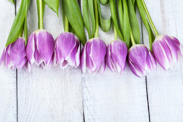 Purple tulips on white wooden background