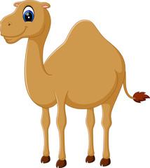 Illustration of cute funny camel