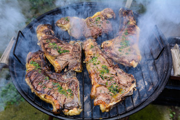 Outdoor Barbecue Meat in the Country. /  Roast beef, cooked in the outdoor barbecue in a rural location. Sauce: olive oil, salt, parsley.