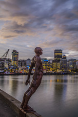 Wellington skyline bei Nacht