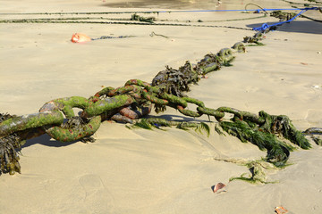Chain for mooring on beach, Newquay, Cornwall, UK