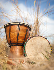 African hand percussion instrument - Djembe drums