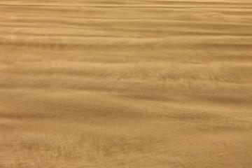 sable d'une plage