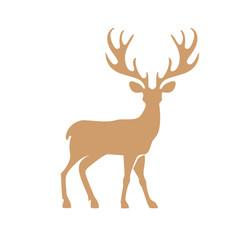 Deer with antlers.