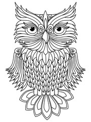 Amusing owl black outline