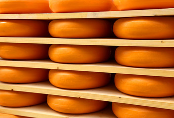 forms of delicious Dutch cheese
