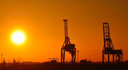 Cranes at Sunset Felixstowe