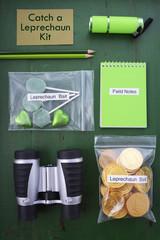 Catch a Leprechaun Kit