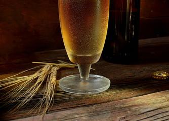 beer, barley on wooden background