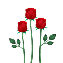 stylized three red roses with leaves