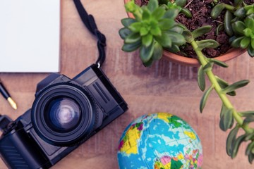 Camera and globe by potted plant on desk