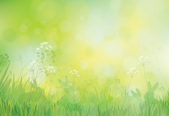 Vector rabbits in grass, spring nature background.
