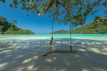 Wall Mural - Swing for relaxation at the tropical beach