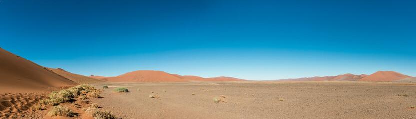 Photo sur Plexiglas Secheresse Namib Desert (near Sossusvlei)