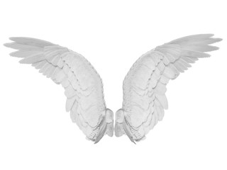 Wings isolated on the white background