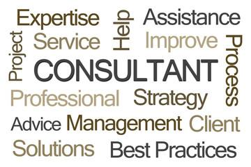 Consultant Word Cloud