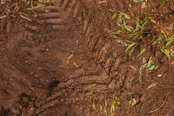 Texture of brown mud with tractor tyre tracks