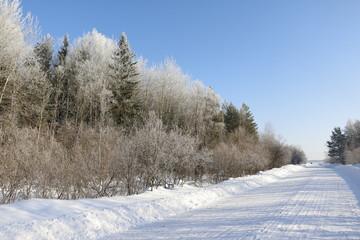 Снежная дорога зимним солнечным днем