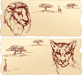 Lion and cheetah heads. Hand drawn ink portrait horizontal sketc