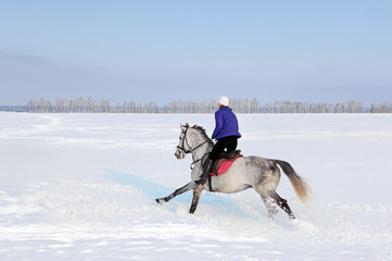 Woman winter horseback riding in snow, arabian stallion running