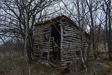 old wooden house in the woods
