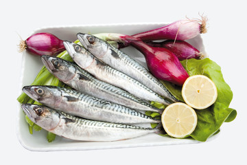 Food cousine composition ingredient for eating, Fish composition mackerel on plate with lemon, salad and onions