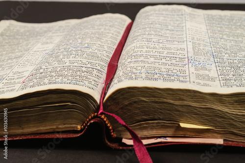 Well Read Open Study Bible