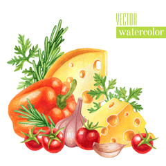Watercolor illustration with cheeses, vegetables and herbs