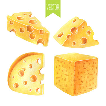 Watercolor set of cheeses