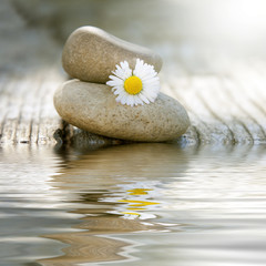Acrylic Prints stones in balance with daisy and reflection in water