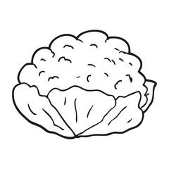 black and white cartoon cauliflower