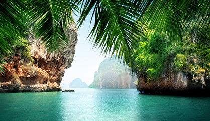 Wall Mural - tropical sea and rocks